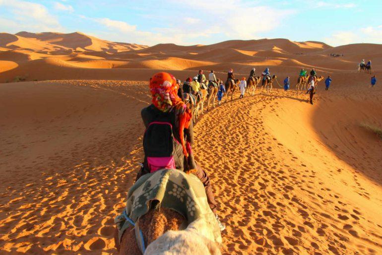 Morocco Sahara Desert sanddunes camel