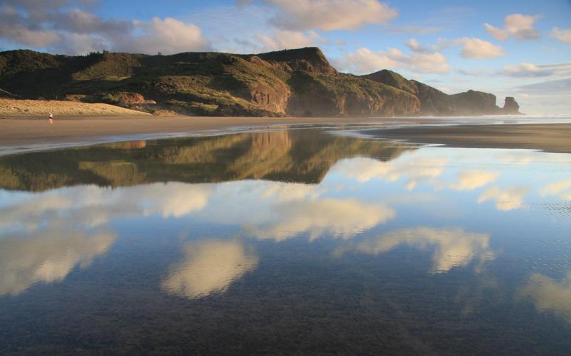 Raeakiaki Point, Bethells Beach, New Zealand