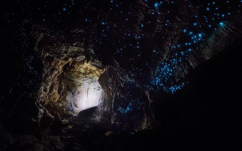 Waitomo Caves, New Zealand