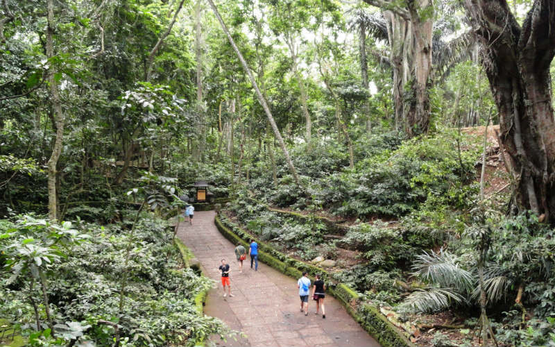 Sacred Monkey Forest Sanctuary, Bali, Indonesia