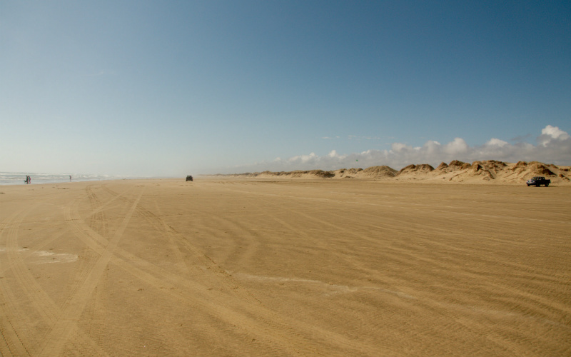 Ninety Mile Beach, Northland, New Zealand