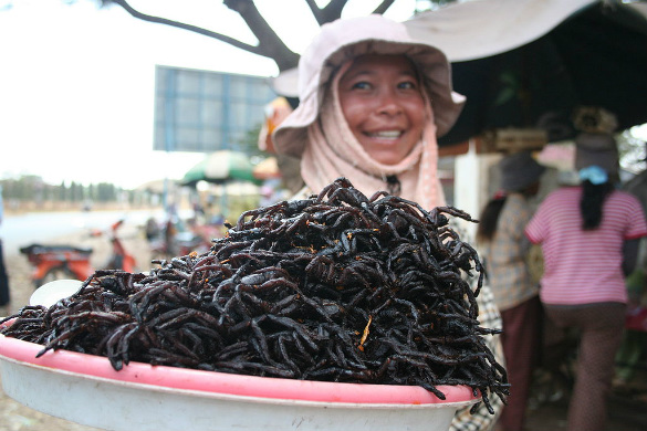 Fried spiders at a market, Cambodia