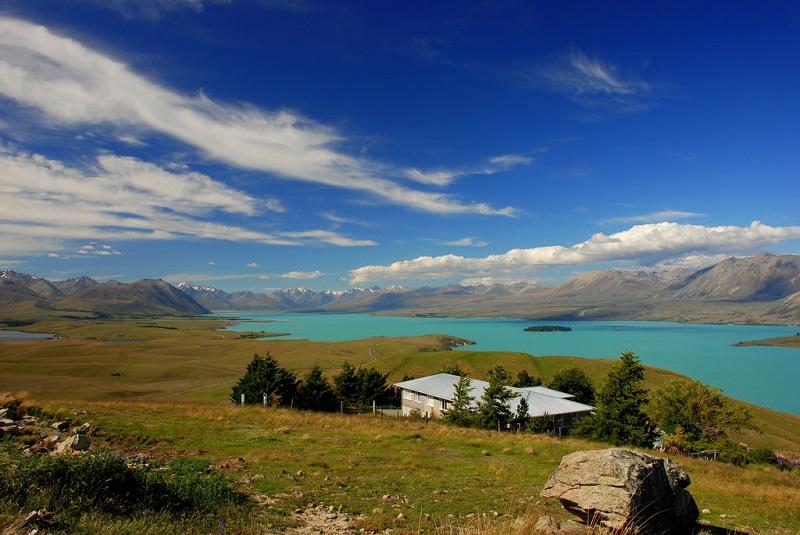 View of Lake Tekapo across a vineyard, South Island Road Trip
