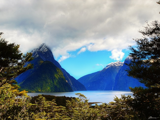 Milford Sound Lookout South Island New Zealand
