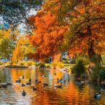 Queenstown-Lake-Autumn-Colours-Free-Activities