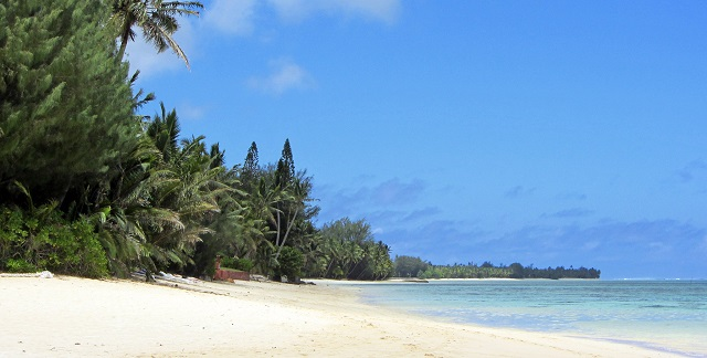 Cook-Islands-Palm-Grove-Beach-South-Pacific-Island-Guide