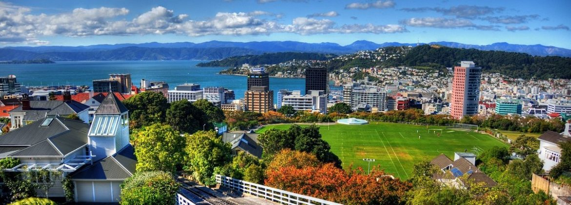 Things-To-Do-Wellington-Free