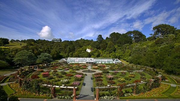 Things-To-Do-Wellington-Free-Botanic-Gardens