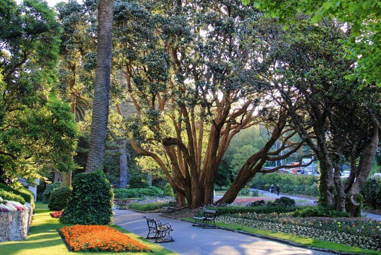 Wellington-Botanic-Garden-Picnic-Spots