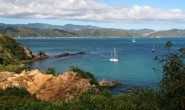 Matiu-Island-Wellington-Boats