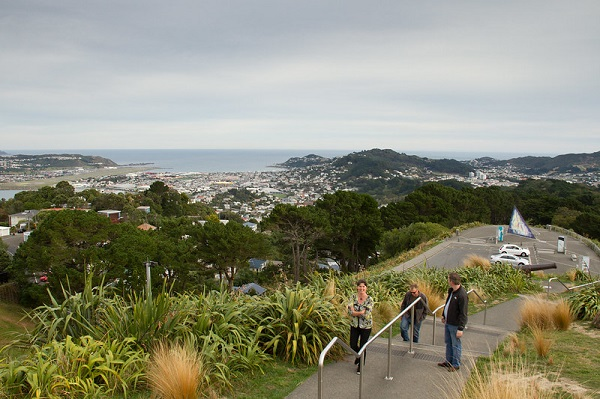 Mount-Victoria-Lookout-Picnic-Spots-Wellington