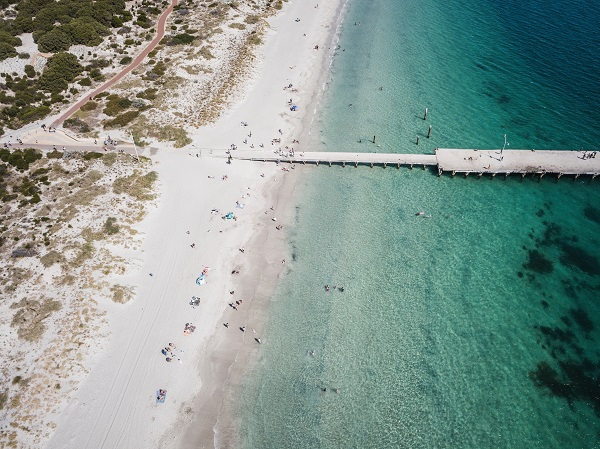 Coogee-Beach-Jetty-Aerial