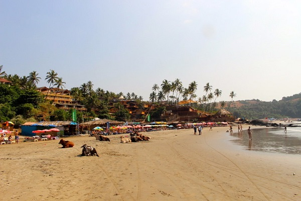 Goa-India-Holiday-Alternative