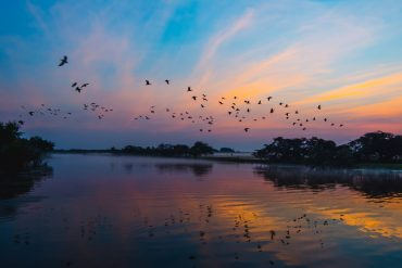 Kakadu-Sunset-Best-Time-To-Visit