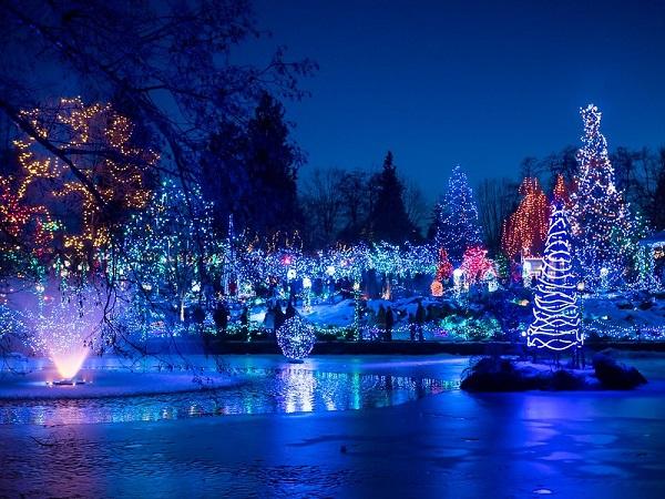Christmas-Lights-Van-Dusen-Gardens