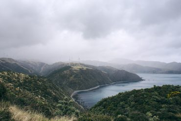 Makara-Beach-NZ-Carbon-Offset